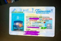 Американка отримала дуже дивне водійське посвідчення. Фото: Facebook Jade Dodd