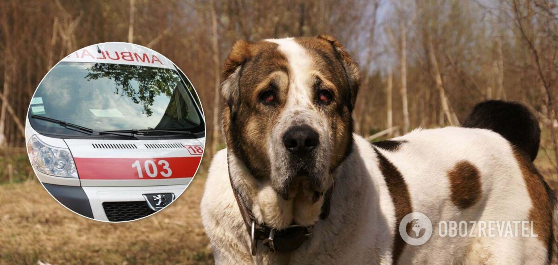 Під Херсоном собака пошматував господиню: зняв частину скальпу і прокусив око