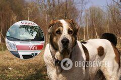 Под Херсоном собака напал на хозяйку: снял часть скальпа и прокусил глаз