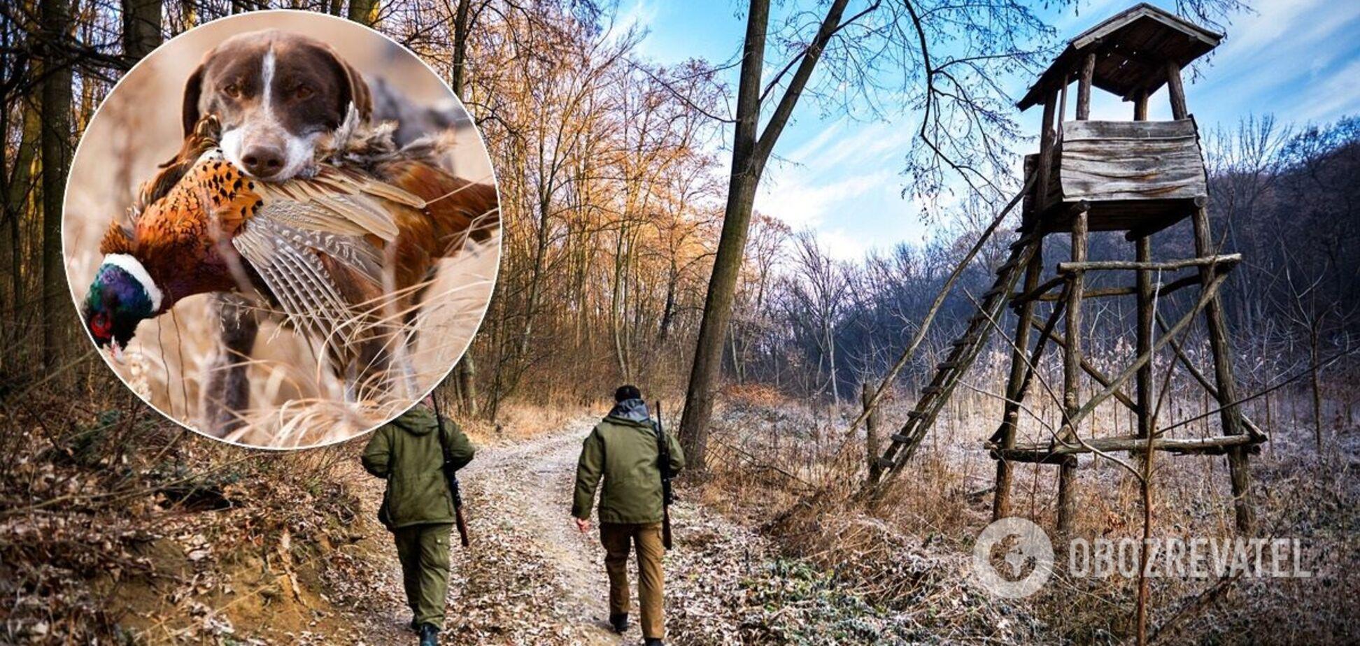 Сезон полювання в Україні: полювати потрібно правильно