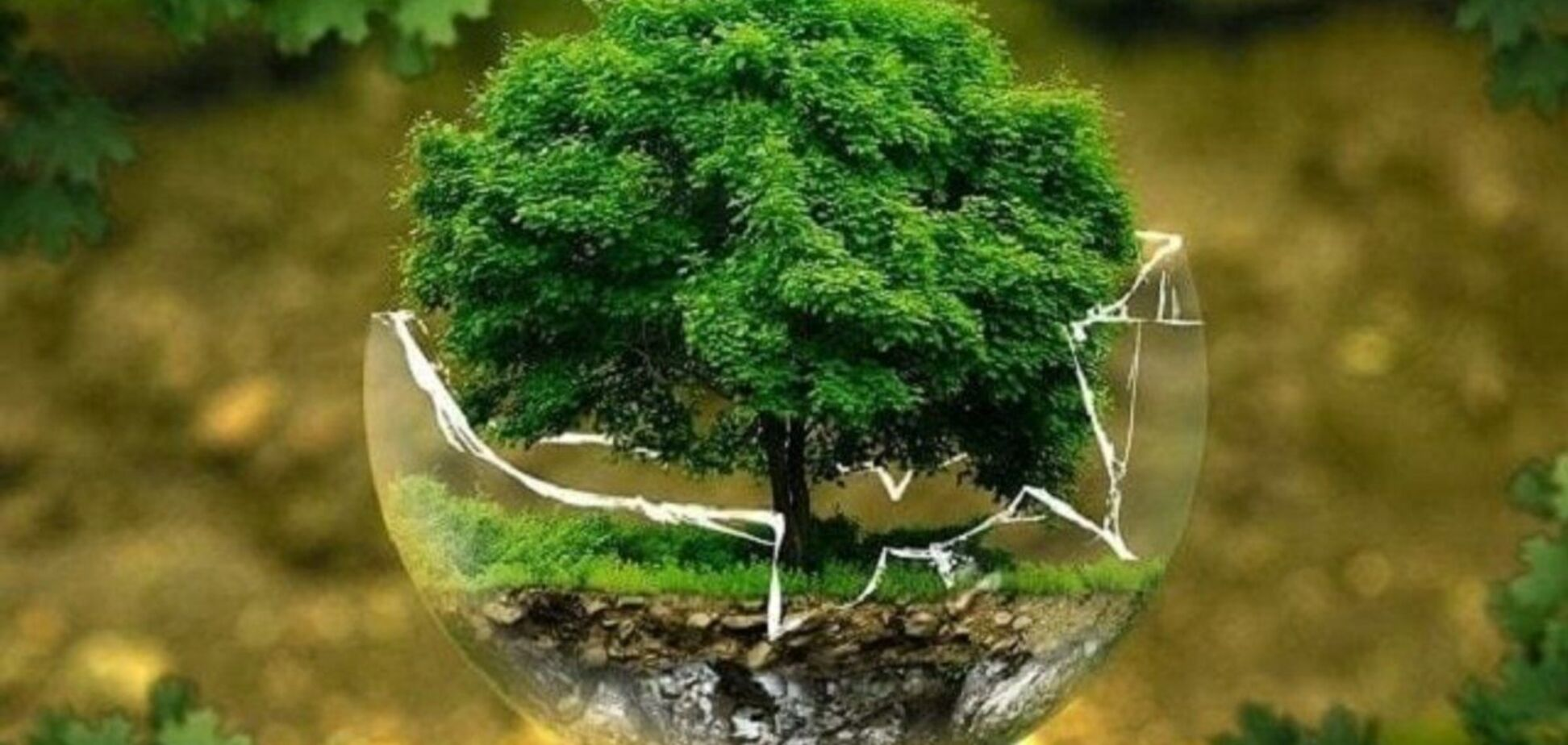 Законопроект об экоконтроле создает значительные коррупционные риски, – Укрцемент