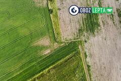 Социальный урожай: почему агробизнес должен помогать обществу
