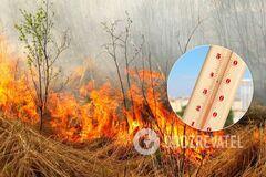 Украинцев предупредили о пожарной опасности: какие регионы могут пострадать