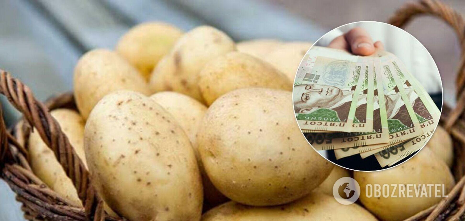 В Україні картопля подорожчала, незважаючи на збирання врожаю