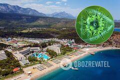 Коронавірус накрив Туреччину з новою силою: як відобразиться на курортах і чи варто боятися українцям