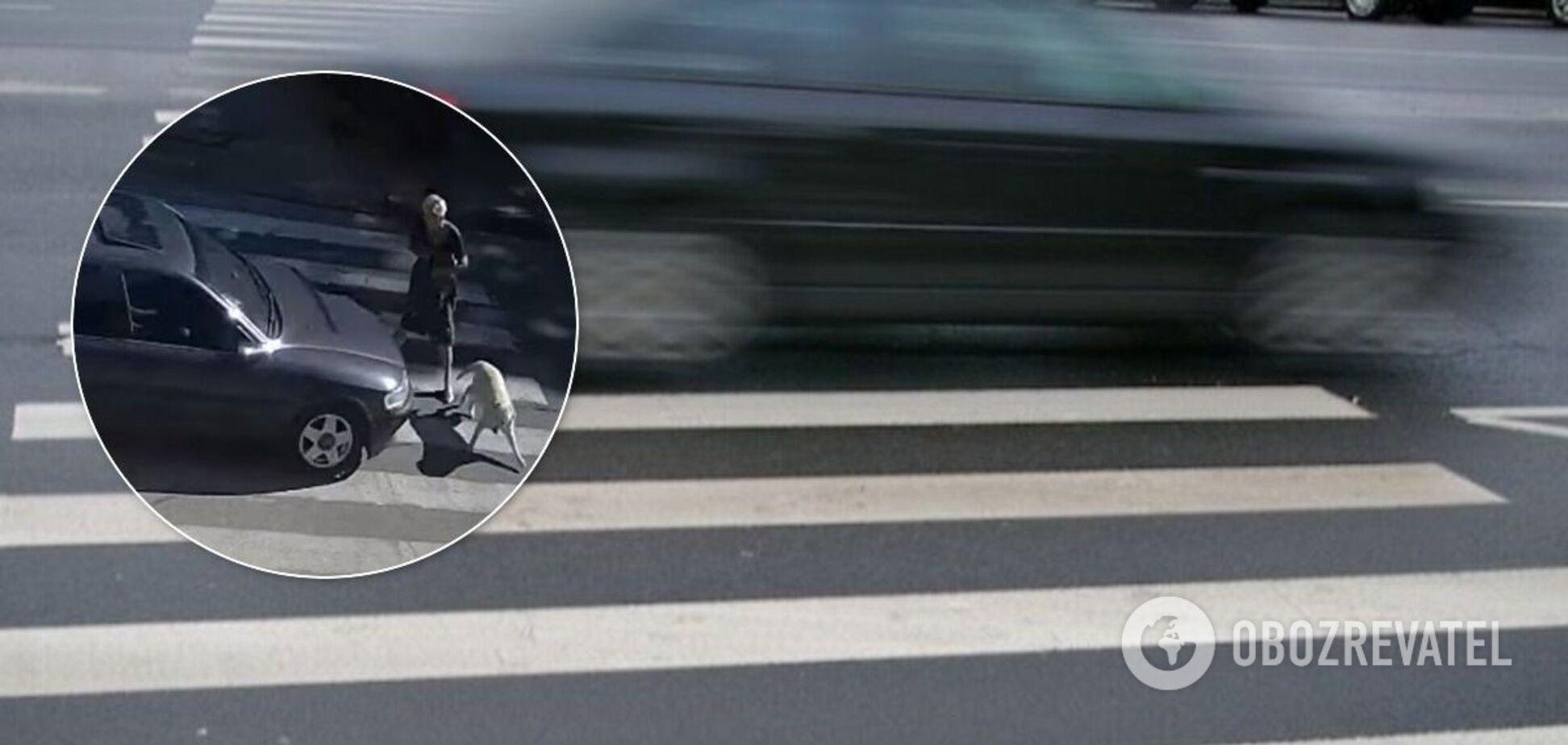 На Дніпропетровщині авто на швидкості збило жінку з собаками. Відео 18+