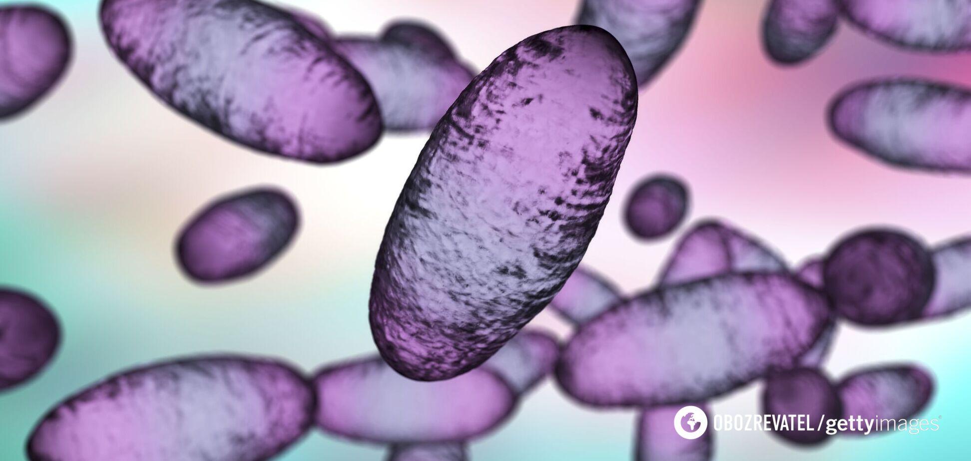 Кишкову чуму виявили в Китаї