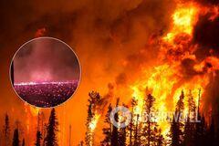 Лесные пожары в Калифорнии вызвали огненный смерч. Видео