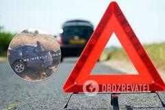 Под Днепром водитель разбил в хлам авто об дерево и чудом выжил. Фото