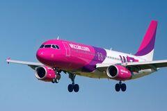 Часть рейсов Wizz Air отменена до конца марта 2021 года