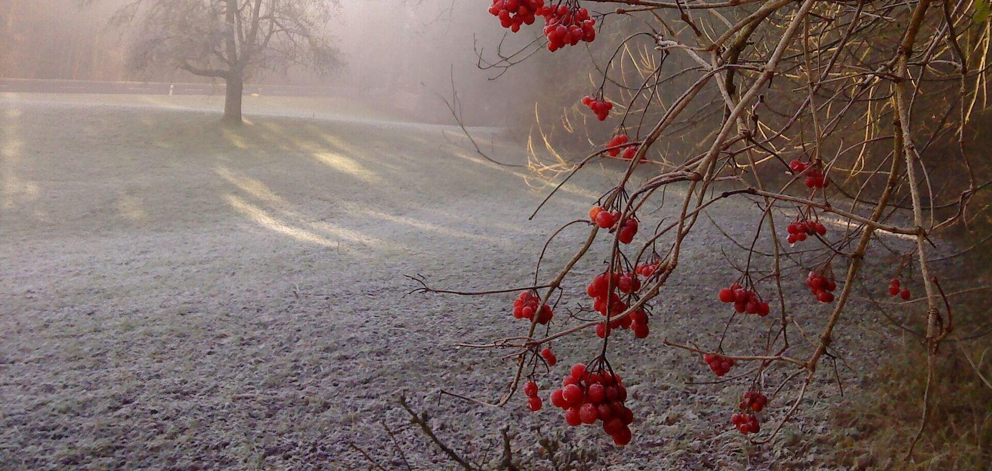Синоптики уточнили, когда придут заморозки в Украину