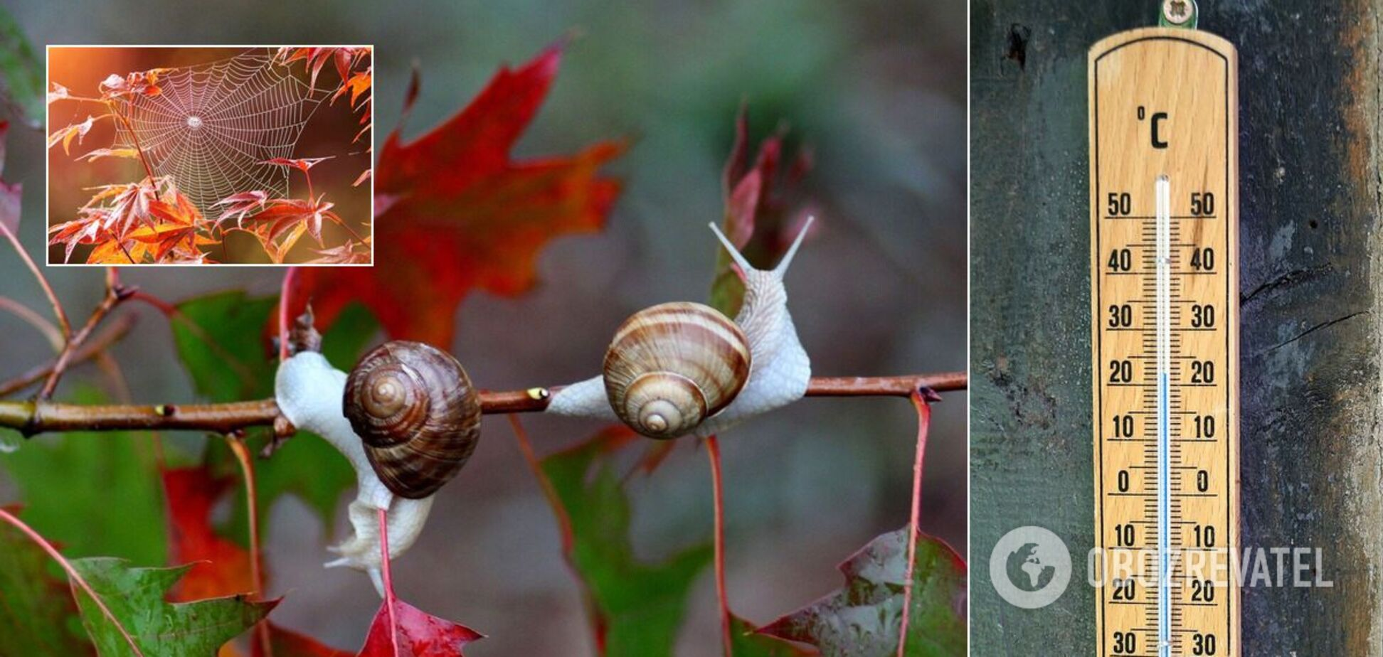 Синоптики – про погоду на осінь в Україні: заморозки і три бабиних літа