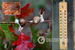 Синоптики – о погоде на осень в Украине: заморозки и три бабьих лета