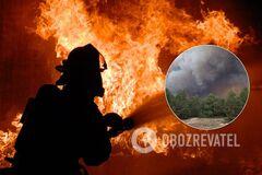На полигоне в Киевской области произошел пожар