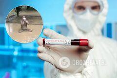 Купавшийся в грязи индийский политик заболел коронавирусом