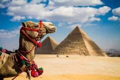 Названы правила путешествия в Египет во время пандемии