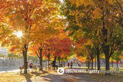 20 сентября в Украине ожидается теплая погода