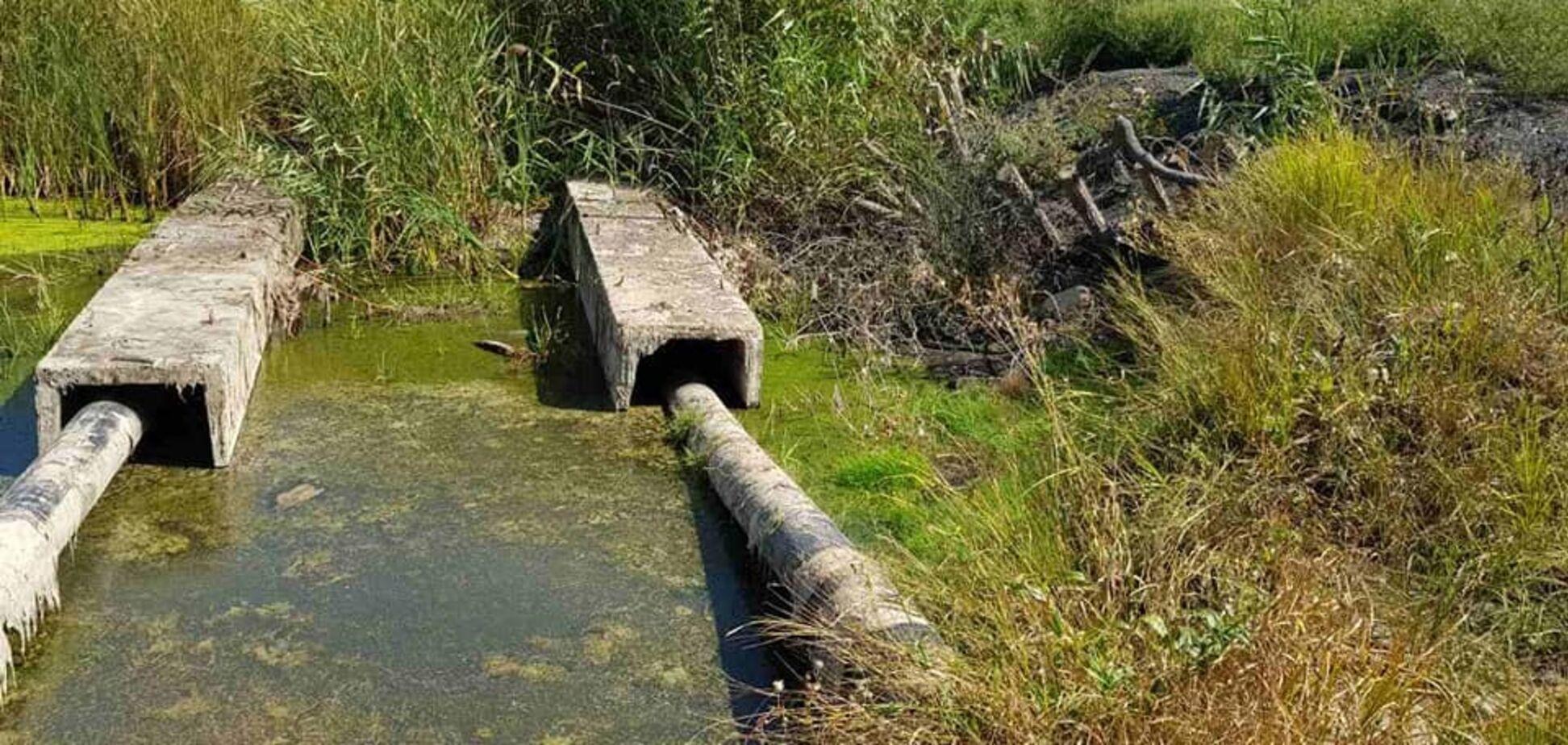 На Дніпропетровщині люди самовільно перекрили річку дамбою. Фото