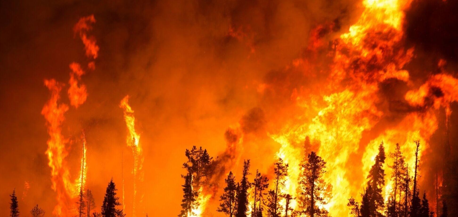 У Дніпрі та області рятувальники попередили про найвищу пожежну небезпеку