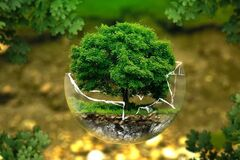 Всемирный фонд природы заявил о экокатастрофе в Украине