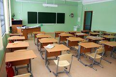 Учительница ударила пятиклассницу книгой по голове