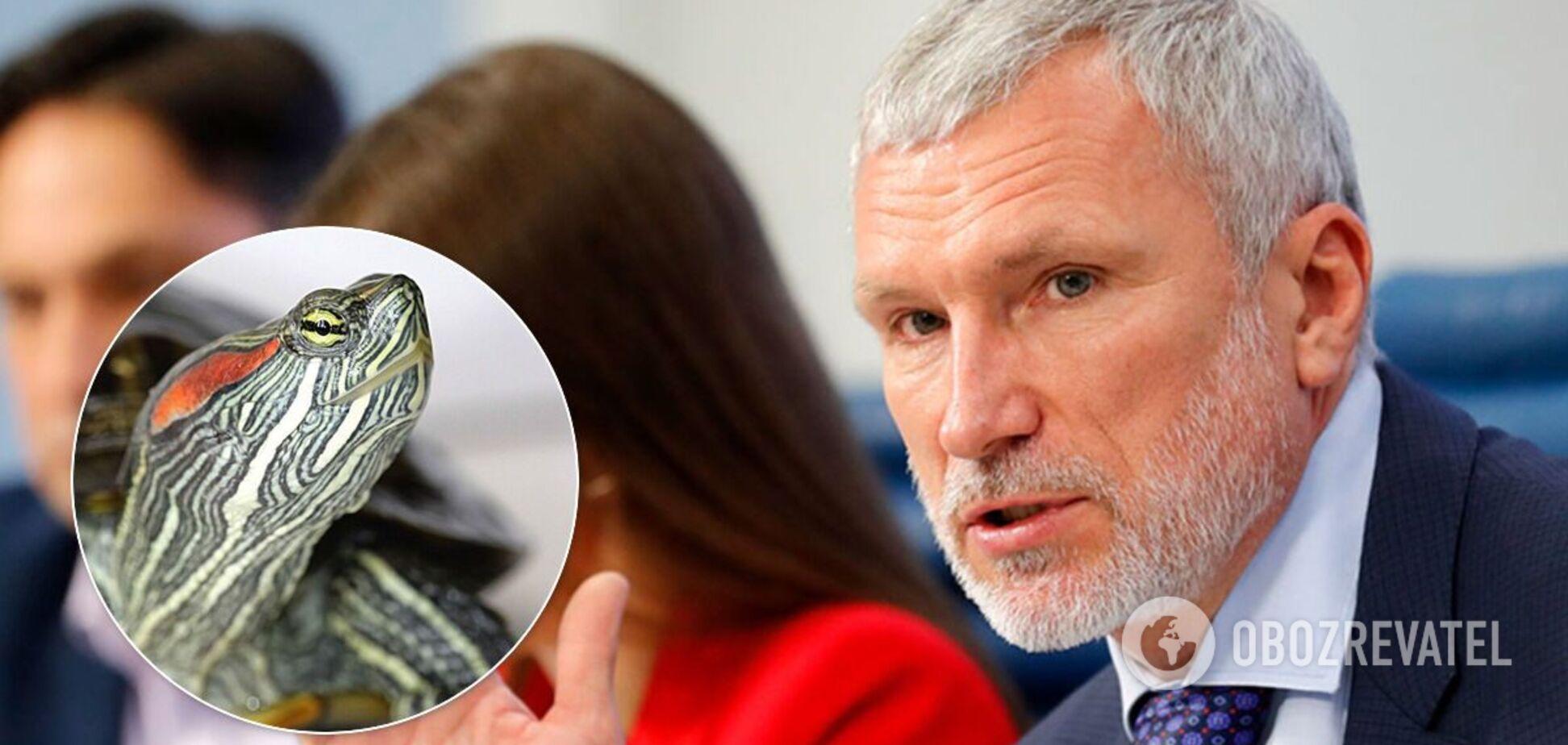 Олексій Журавльов видав фейк про зообордель з черепахами в Данії