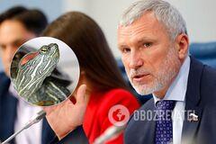 Алексей Журавлев выдал фейк о зооборделе с черепахами в Дании