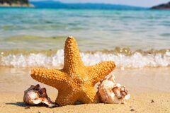 Всемирный день моря отмечается с 1978 года