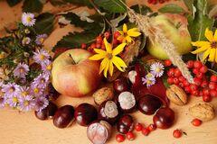 Что отмечают 25 сентября в Украине: праздники