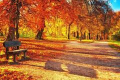 Появился прогноз погоды на октябрь