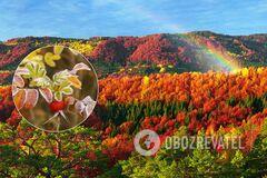 Погода на жовтень в Україні