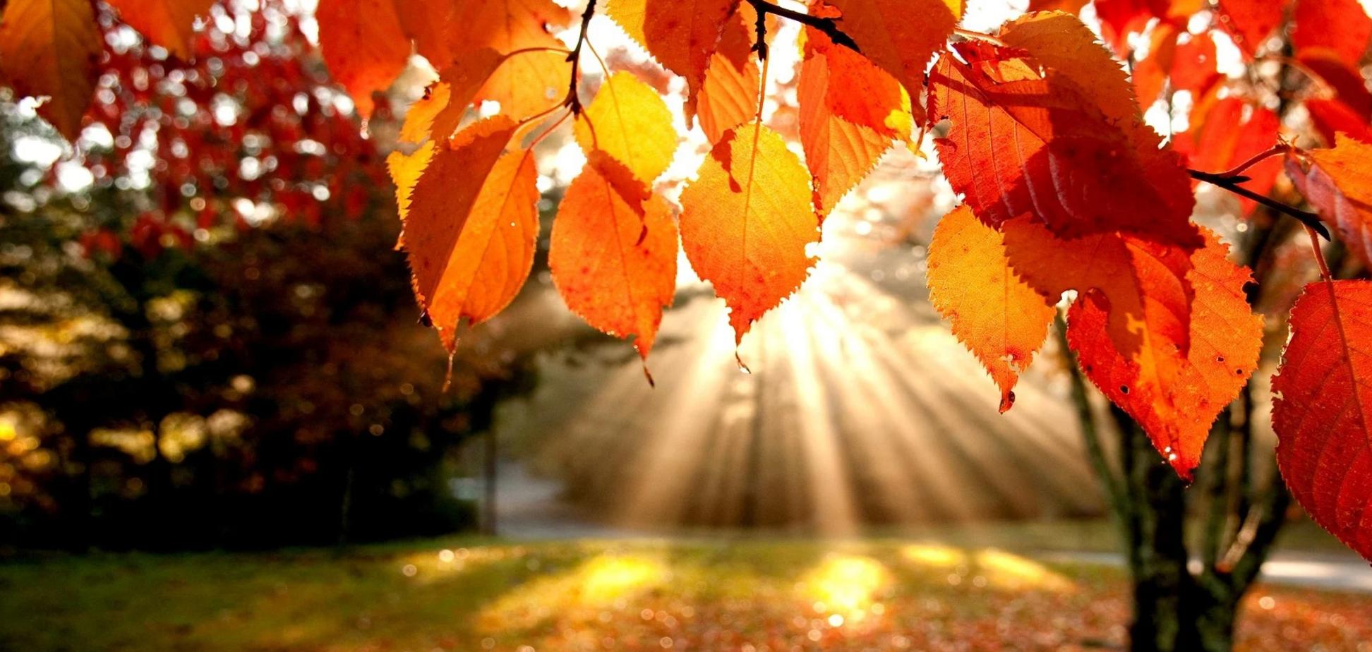 В Украине спрогнозировали теплый октябрь