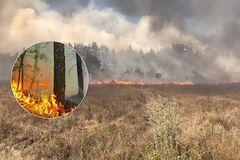 В России на границе с Украиной вспыхнули лесные пожары: есть жертвы. Фото и видео