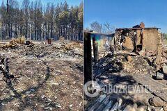 Наслідки пожеж у Харківській та Луганській областях