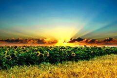 Что нельзя делать на Евтихия Тихого: приметы и праздники 6 сентября