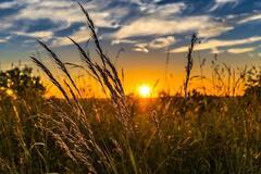 В Украину вернется сухая погода, но не везде