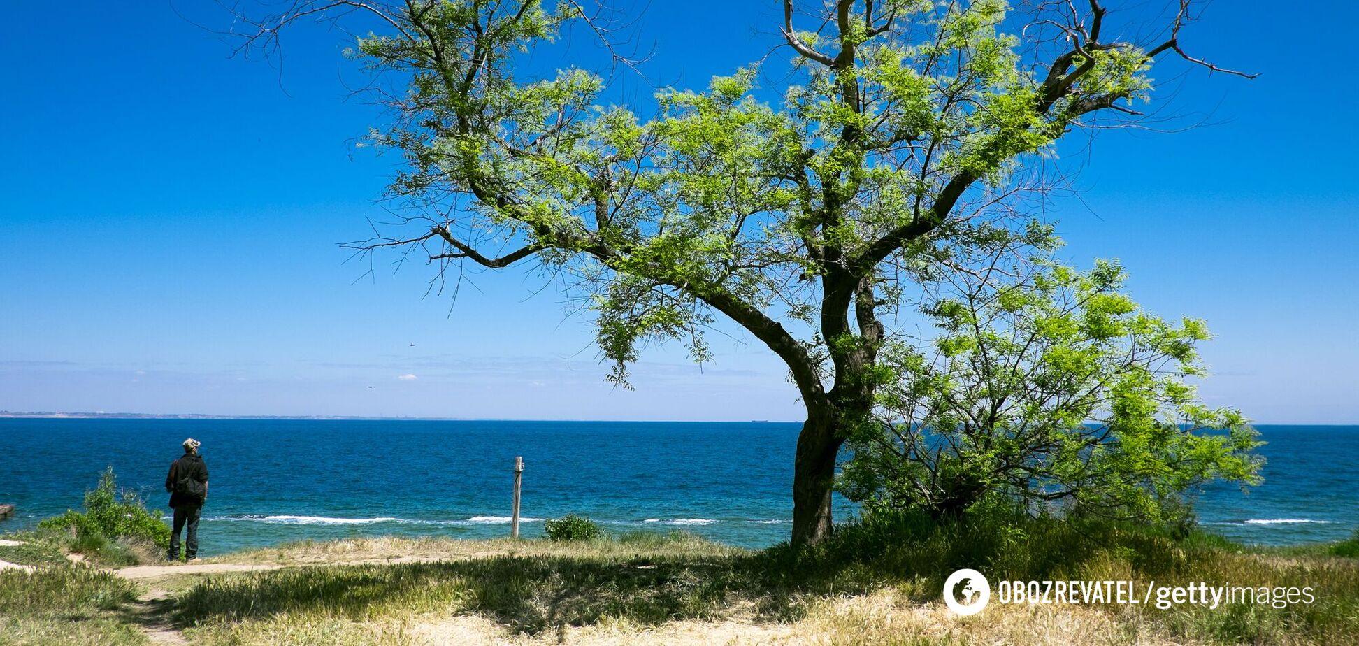 Очевидці розповіли про 'згубне місце' на пляжі під Одесою, де потонуло подружжя