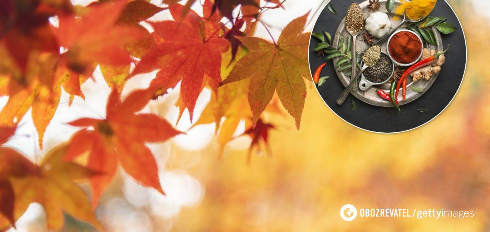 Питание осенью: что есть для крепкого иммунитета и красивой фигуры