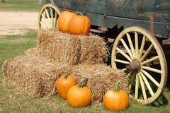 Что отмечают 10 сентября: праздники и приметы