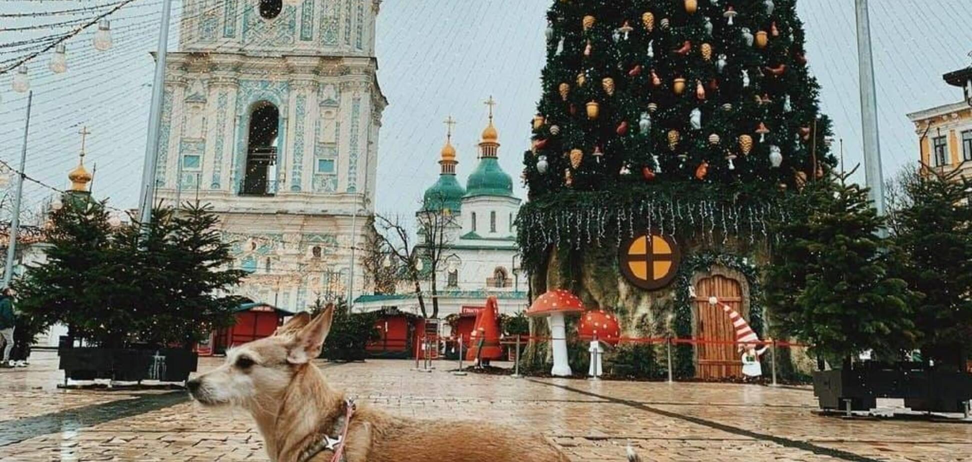 На Софийской площади в Киеве начали сворачивать новогоднюю локацию