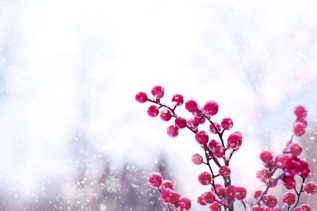 14 січня: які свята відзначають, прикмети й іменинники