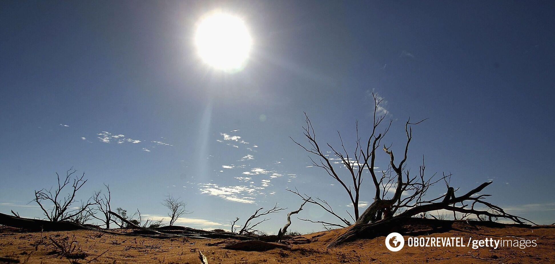 Названо терміни, коли на Землі відбудеться різке потепління