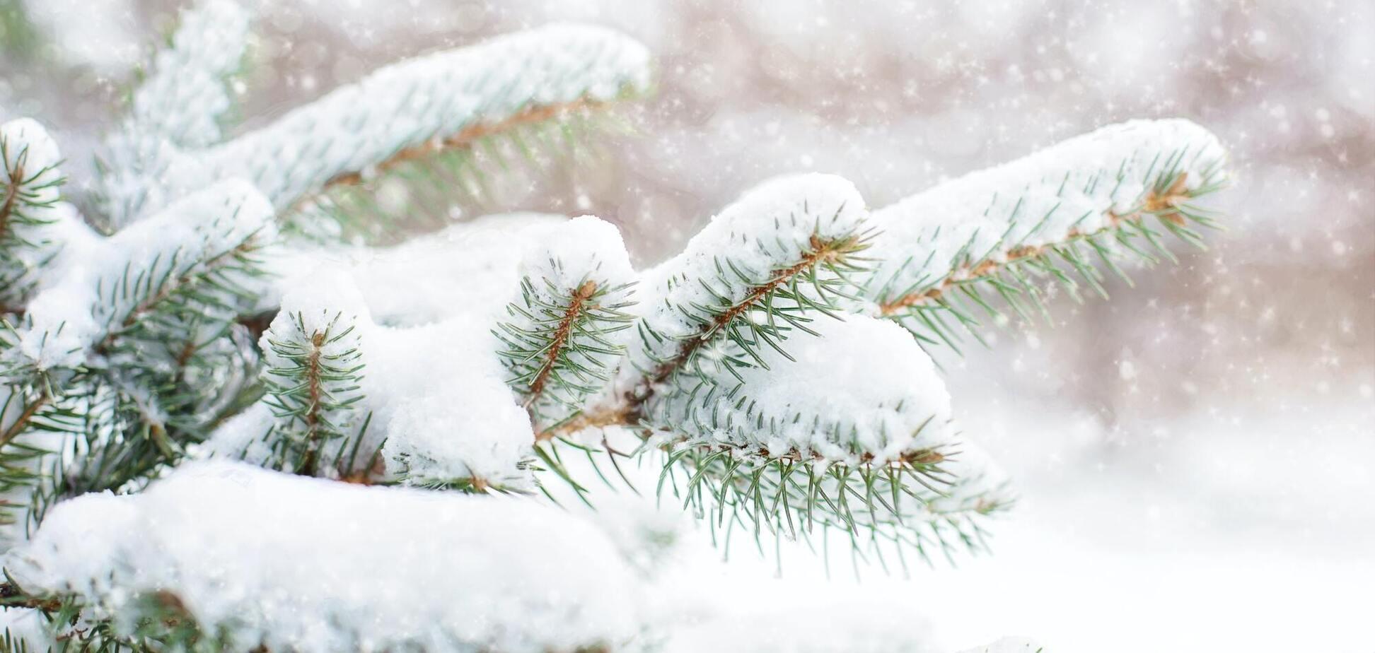 21 січня - День Омеляна Зимового