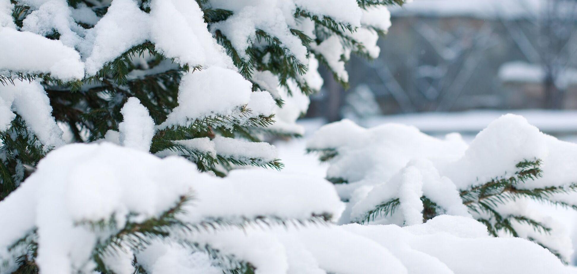 В Украине выпадет снег
