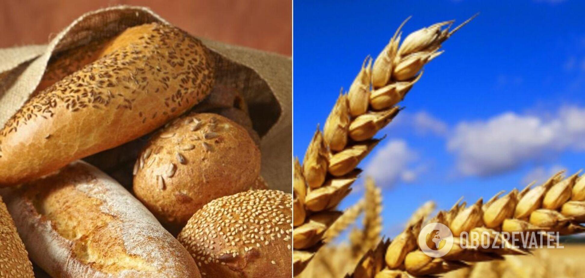 Почему в Украине растет цена на сахар и хлеб
