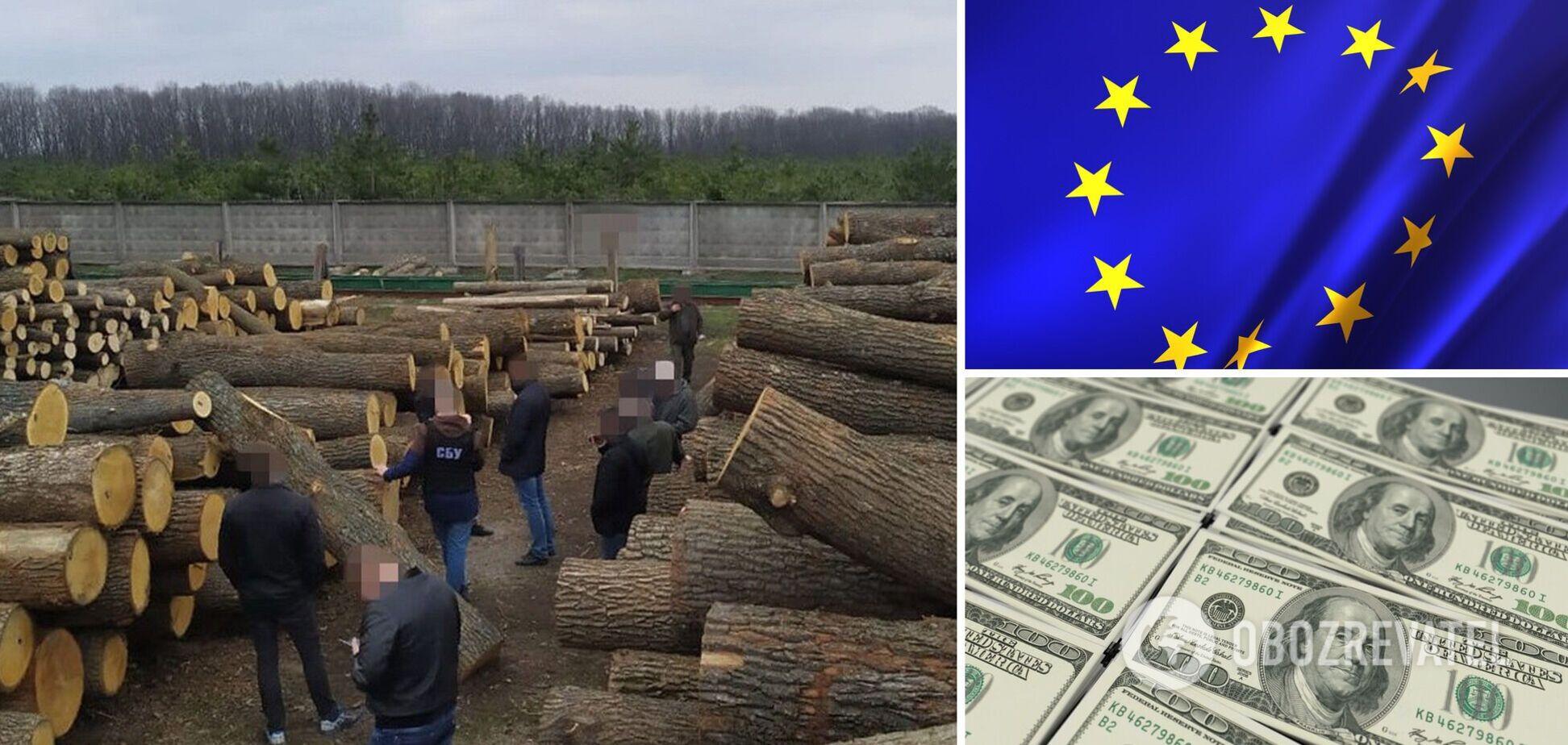 СБУ раскрыла масштабныесхемынезаконной вырубки и продажи древесины из Украины