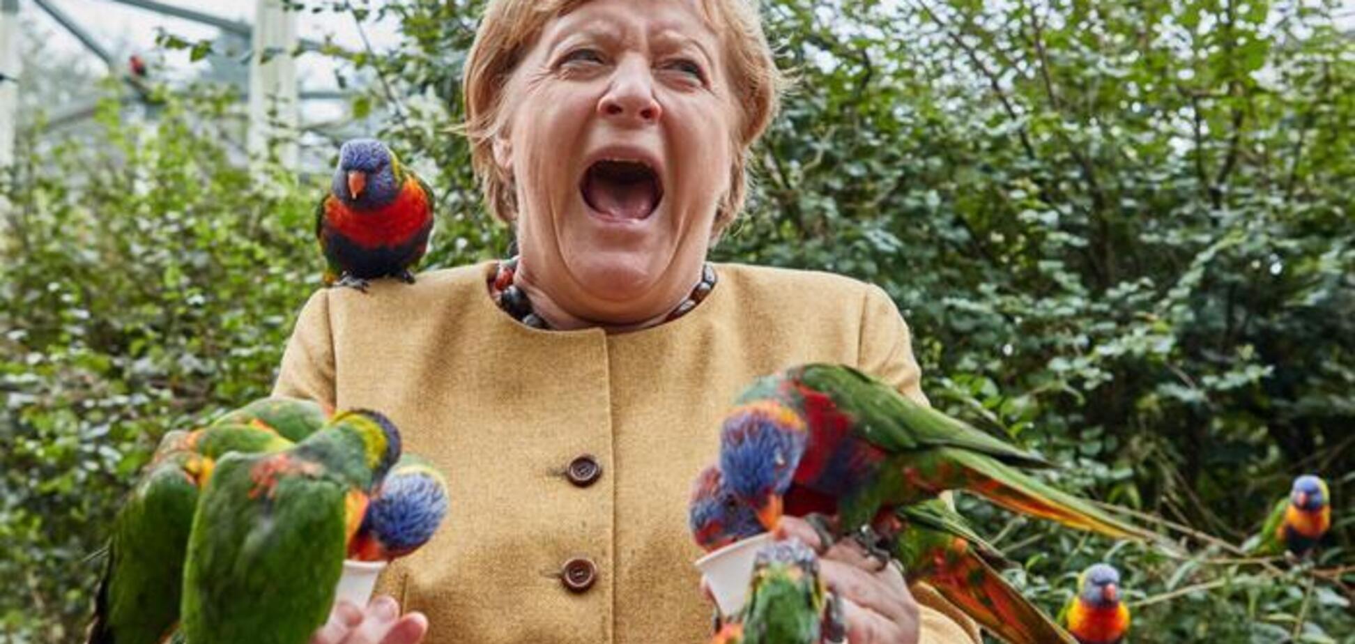 ''Железная леди'' Меркель сложила полномочия