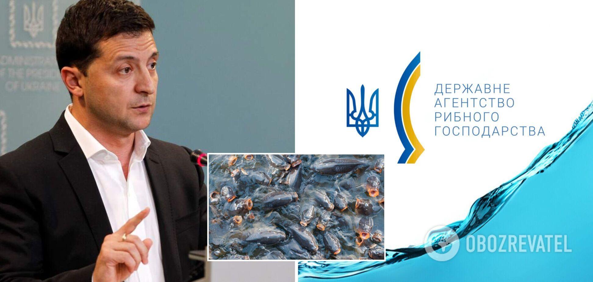 Корупция со стороны Госрыбагентства привела к снижению продукции рыбопроизводства