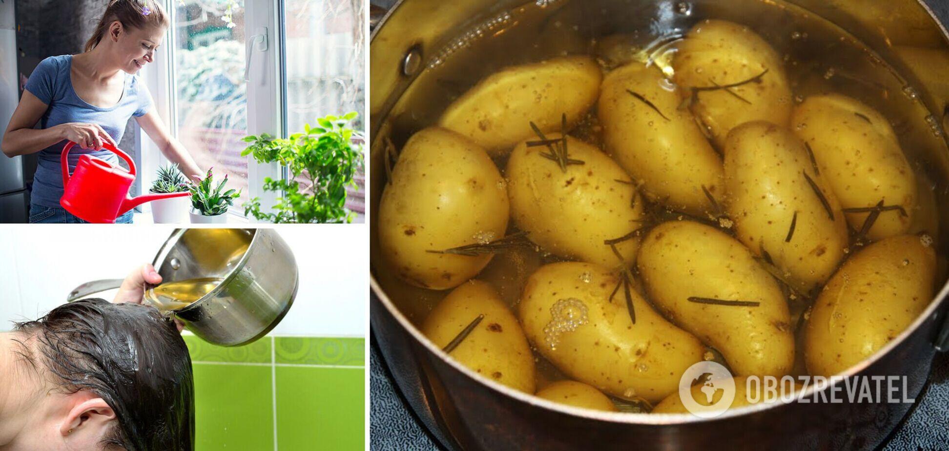 Что делать с водой, где варилась картошка: четыре неожиданных лайфхака