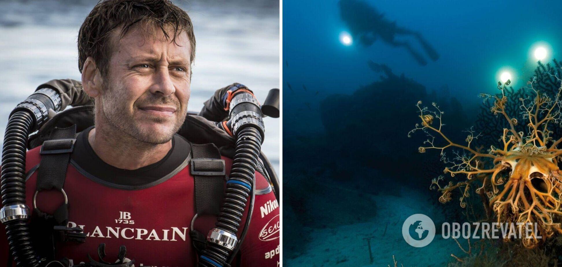 'Взрывной секс' рыбок принес мужчине звание фотографа дикой природы года